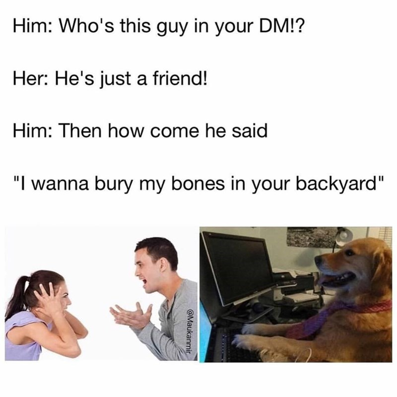 Boyfriend and girlfriend fighting, boyfriend asks why dog at computer is dming her, she says he is just a friend, boyfriend asks why he wants to bury his bones in her backyard. Funny doggo meme.