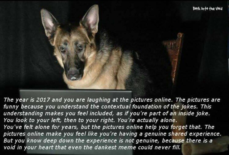 Nihilist dank meme of dog presenting sad truth of memes, the emptiness of life.