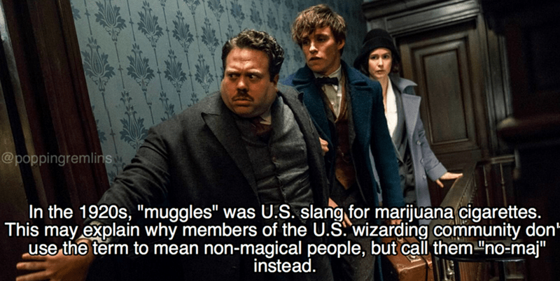 """Movie - @poppingremlins In the 1920s, """"muggles"""" was U.S. slang for marijuana cigarettes. This may explain why members of the U.S. wizarding community don"""" use the term to mean non-magical people, but call them """"no-maj"""" instead."""