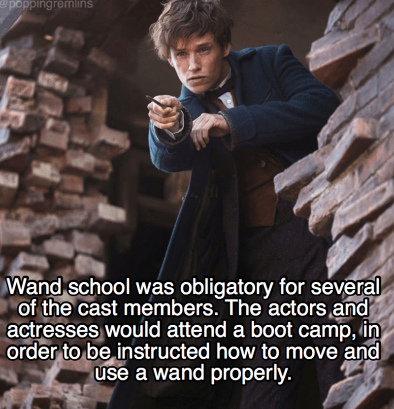 Photo caption - @poppingremlins Wand school was obligatory for several of the cast members. The actors and actresses would attend a boot camp, in order to be instructed how to move and use a wand properly.