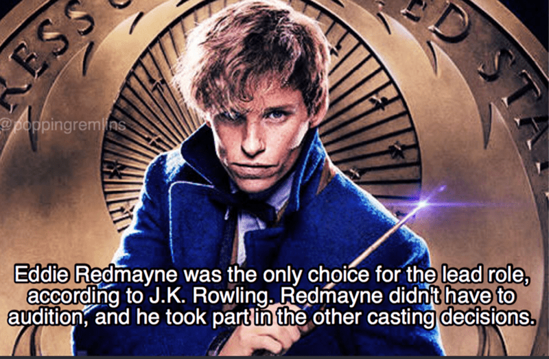 Photo caption - ESS poppingremins Eddie Redmayne was the only choice for the lead role, according to J.K. Rowling. Redmayne didnt have to audition, and he took partin the other casting decisions. ST