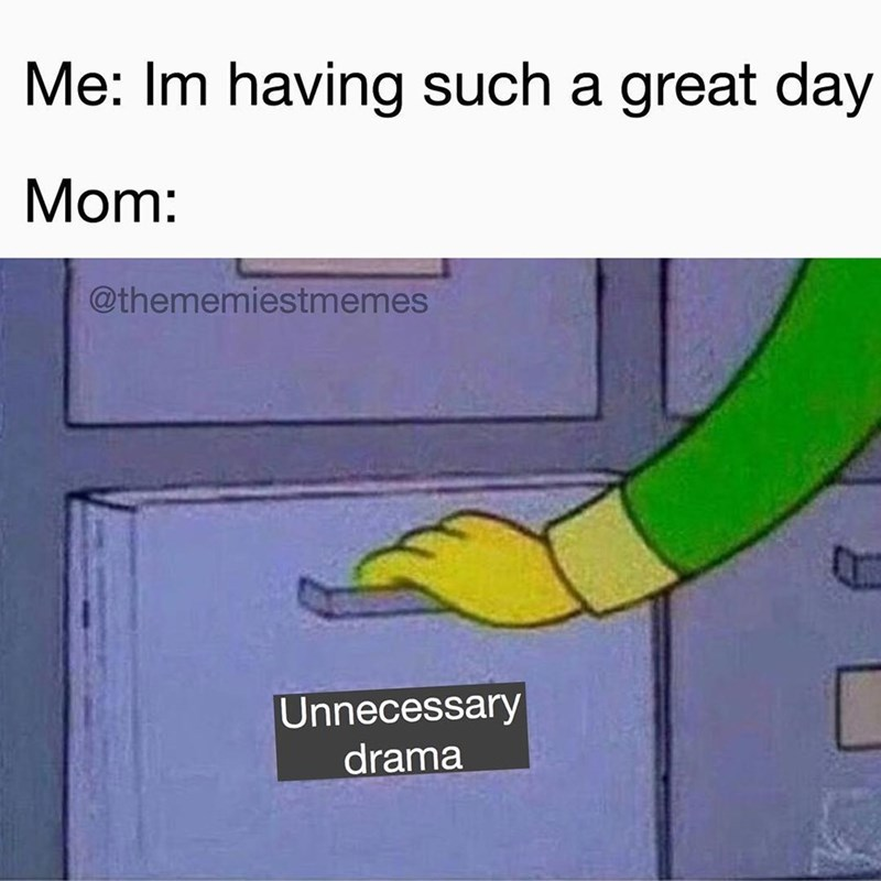 Funny meme about moms that cause unnecessary drama.