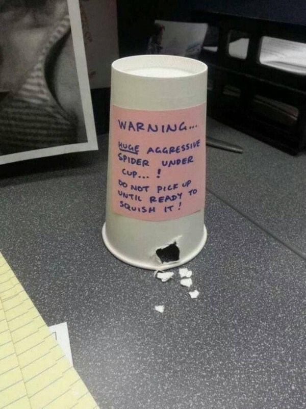 Funny office prank of cup with warning that a dangerous spider is inside, with the sides chewed away to make it look like the spider escaped.