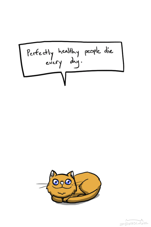 funny cat says everyone dies, even healthy people