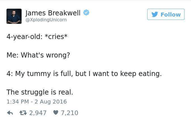 The Struggle Is Real Tweet from James Breakwell about parenting.