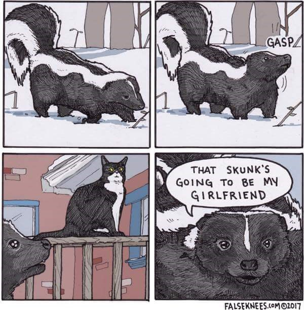 Funny and cute web comic about a skunk and a cat, the skunk thinks the cat is also a skunk, and says she is going to be his girlfriend.