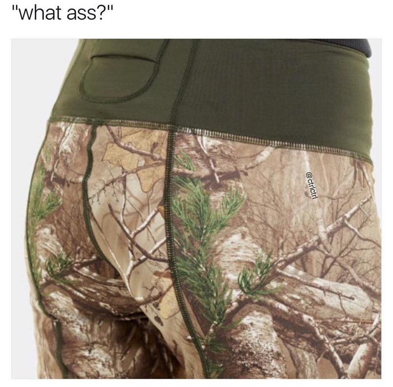 "Caption for this funny meme reads ""what ass?"" because the image is of a person modeling camouflage boxer briefs. The joke is that because it's camouflage the ass cannot be seen."