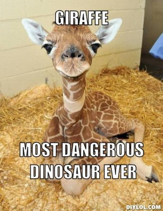 Terrestrial animal - GIRAFFE MOST DANGEROUS DINOSAUR EVER DIYLOL.COM