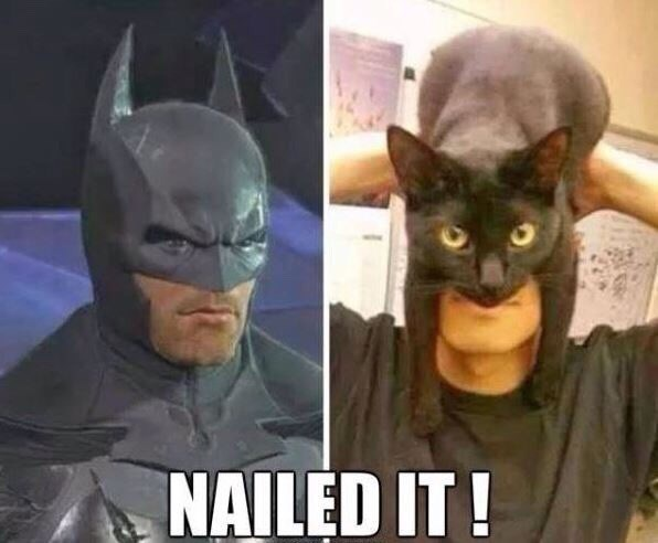 Batman - NAILED IT!