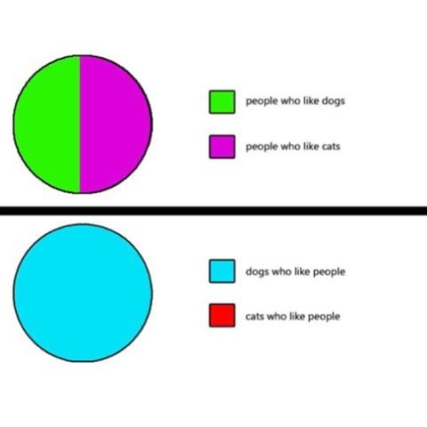 Funny meme and pie chart about people who like cats and dogs, and how many people like people vs how many cats like people.