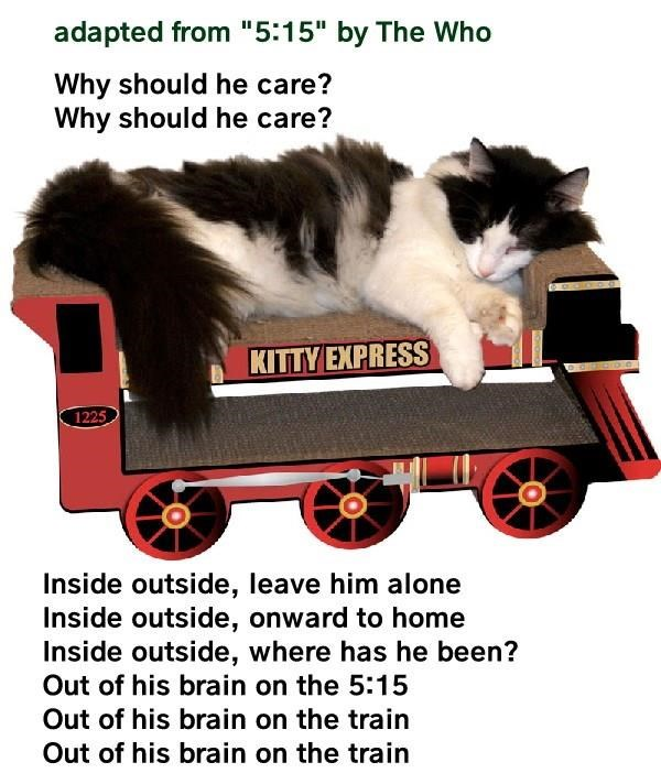 Meme of a cat sleeping on a model train set.