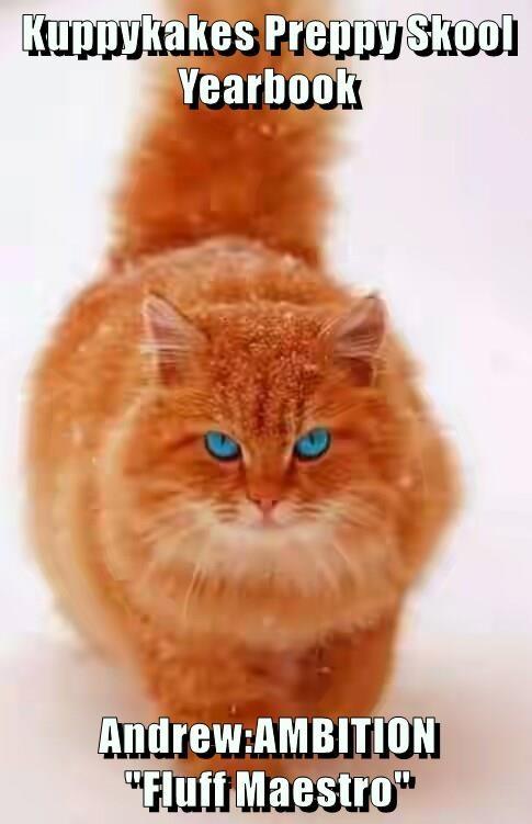 Goofy meme of a very fluffy red cat for Krafty Unibersity.