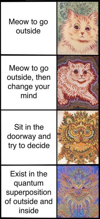 Expanding mind meme but with cats, regarding their indecision and meowing to go outside.