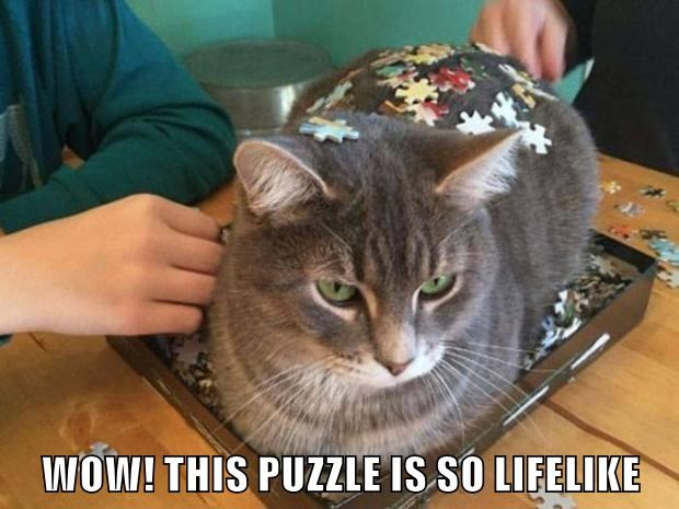 Cat sitting on a puzzle with jigsaw puzzle pieces all around him and a caption saying how the puzzle looks so real.
