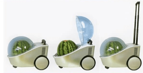 Stroller device to push around heavy watermelon in.