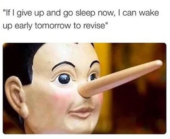 Funny meme about how students lie to themselves that they will get their work done in the morning and they can go to sleep.