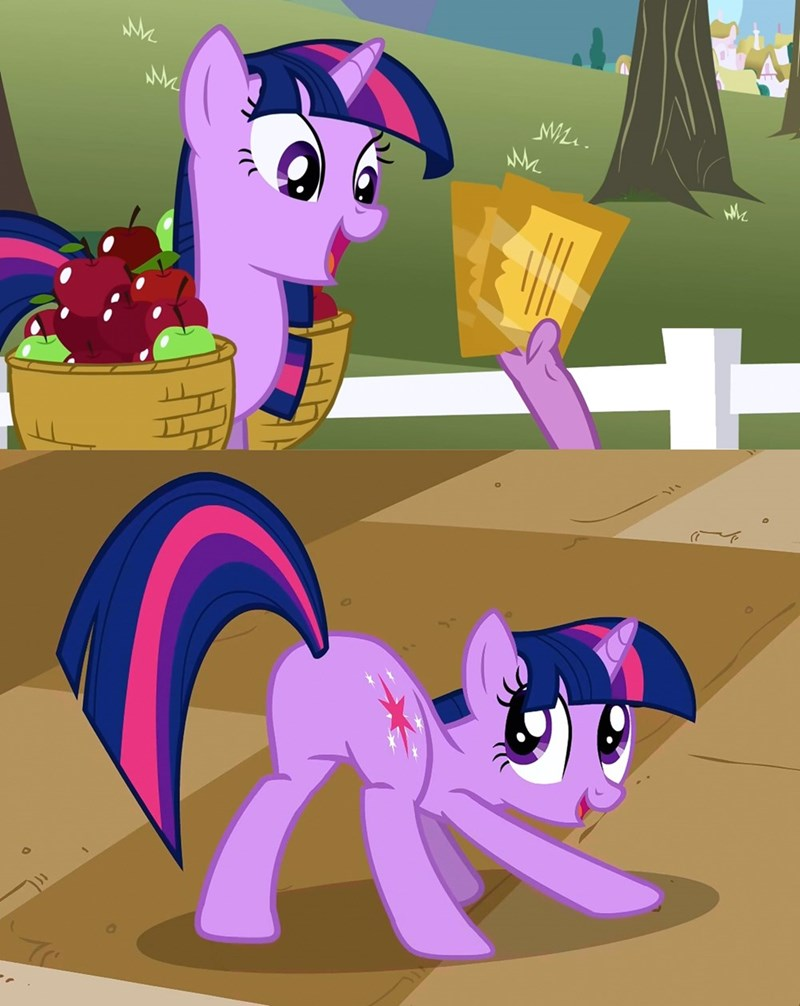the best night ever spike twilight sparkle screencap a canterlot wedding - 9035326208