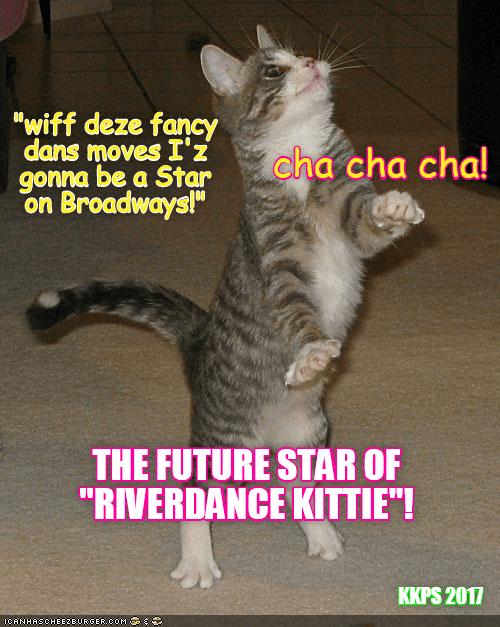 Funny cat meme of dancing kitty captioned saying he going to make it to Broadway.