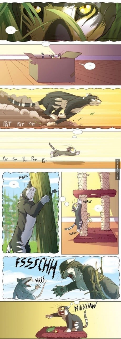 Cute comic that shows how cats see themselves