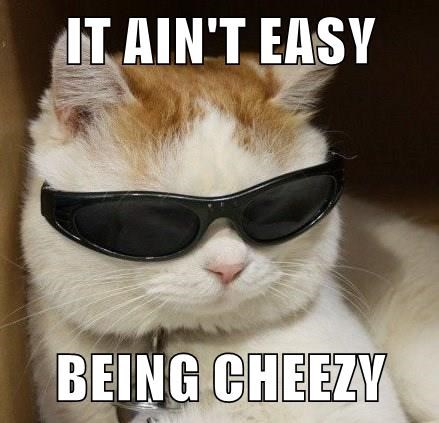 Funny meme of a cute cat wearing sunglasses with a quote from that famous Cheetos commercial but altered for Cheezburger.