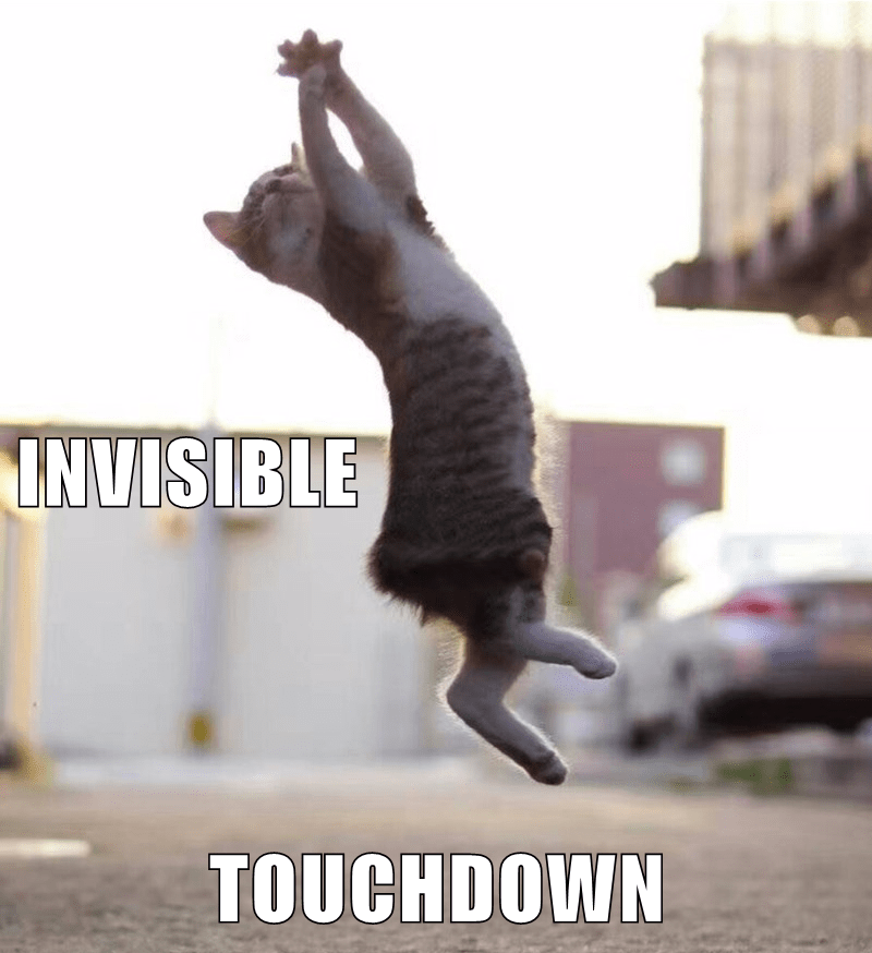 Funny meme of a cat flying through the air, captioned as 'invisible touchdown'