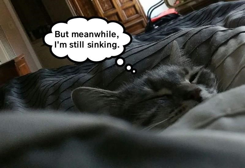 Sleeping cat on a sofa with a pun about he is sinking.