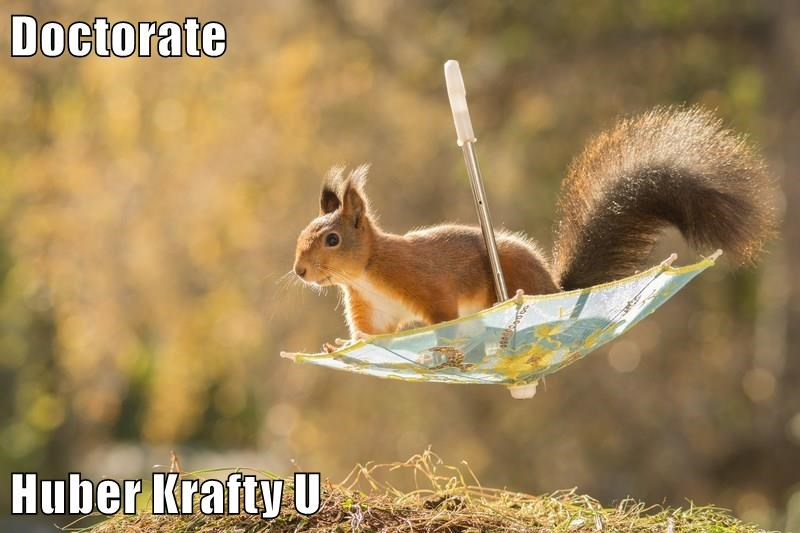 Cute picture of a squirrel on an upside down umbrella and a caption joking that he is a professor from Krafty Diplomas.