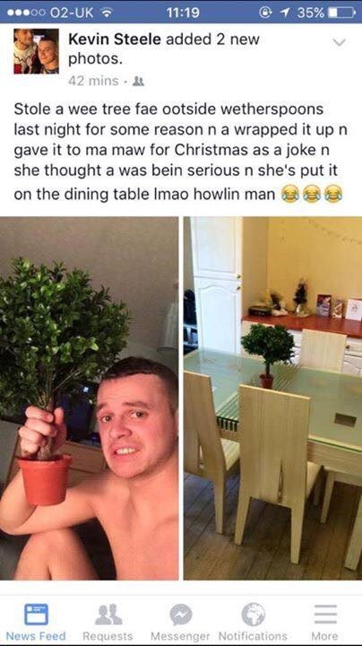 Scottish tweet of a son that gave his mom a plant for Christmas