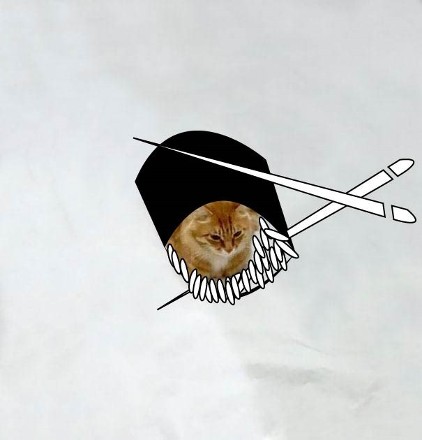 Cool drawing over a cat that makes it look like he a small piece of sushi.