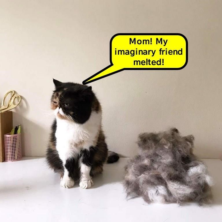 Funny meme of a cat next to a pile of his own fur and a caption complaining about his melting imaginary friend, which the pile of fur TOTALLY looks like.