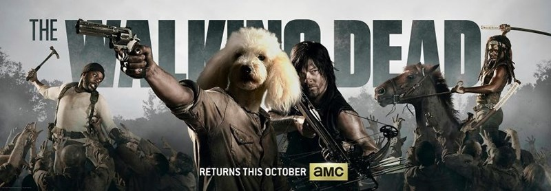 Dog photoshopped into banner for The Walking Dead