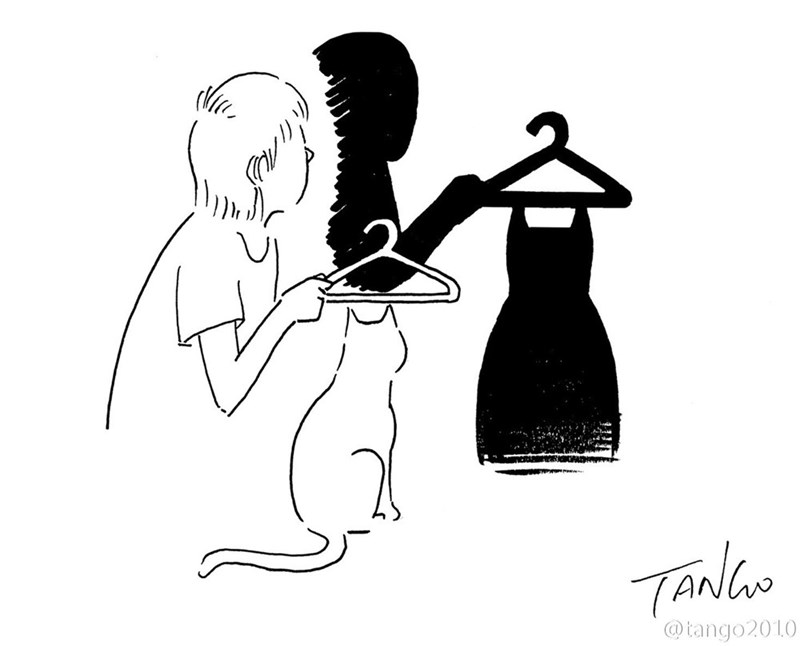 Cool optical illusion illustration of someone holding a hanger over their cat and the shadow looks like a dress is on the hanger.