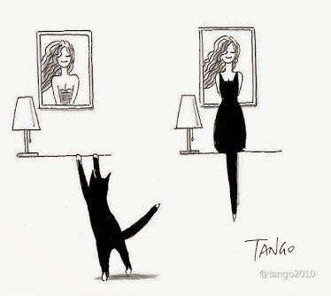 Cool Cat Illustrations - Cat climbs to look at photo and his silhouette looks like her dress.