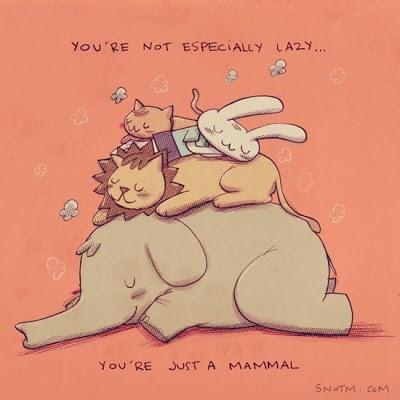 Cartoon - YOu'RE NOT ESPECIALLY LA2Y.. You RE JUST A MAMMAL SNOTM CoM