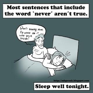 Cartoon - Most sentences that include the word never aren't true. Dewr voRky, HuN. youk http://mhpronk.blogspot.com Sleep well tonight.
