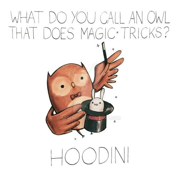 Cartoon - WHAT DO YOU CALL AN OWL THAT DOES MAGIC TRICKS? AREENIICOEVTANT.cOM HOODINI