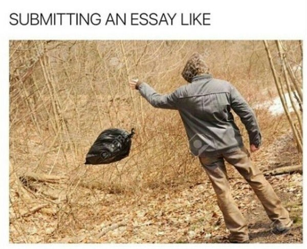 college meme about submitting an essay that you know is total garbage