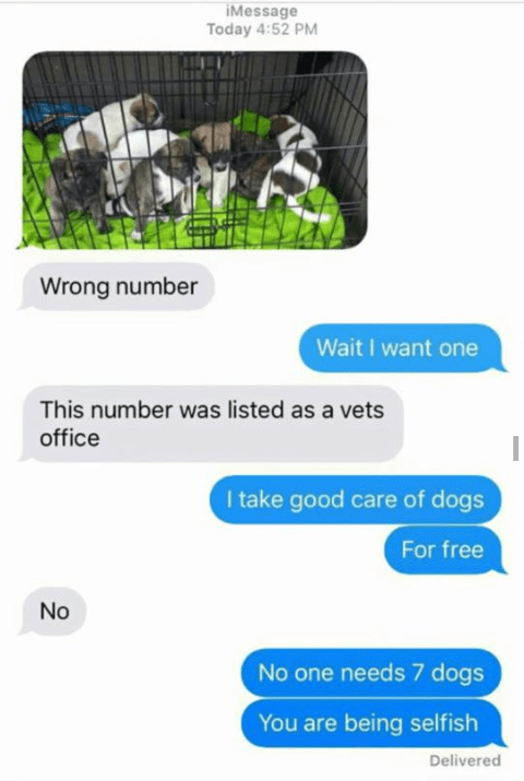 Funny text exchange featuring a wrong number and a photo of 7 puppies, sender thought the number belonged to a vet's office, the person on the other end wants to take some of the puppies and calls the sender selfish for not letting them have one.