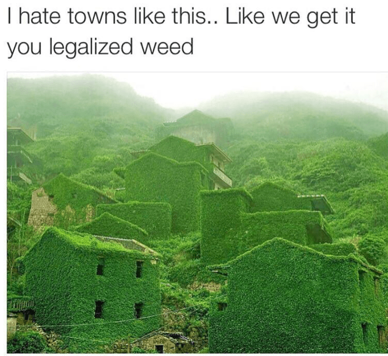 Thrusday meme with pic of town covered in moss to show off that weed is legal in it