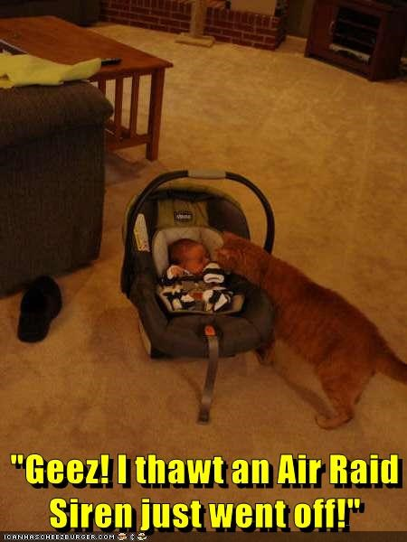 Meme of a cat meeting the baby and captioned that he thought it was an air-raid siren going off.