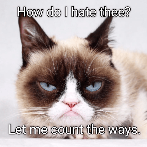 Grumpy cat meme that is just hating on everyone.
