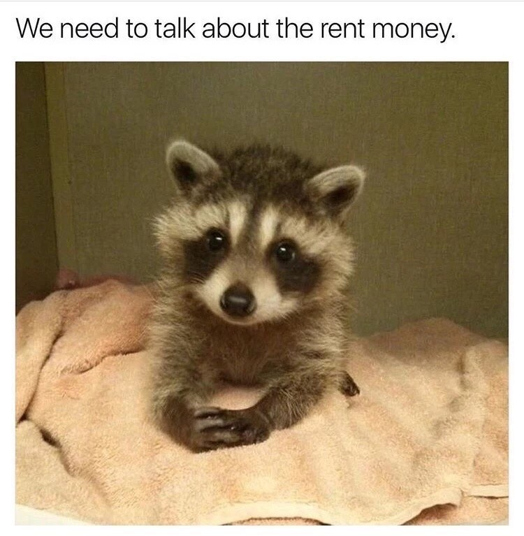 Mammal - We need to talk about the rent money.