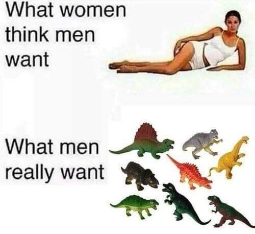Animal figure - What women think men want What men really want