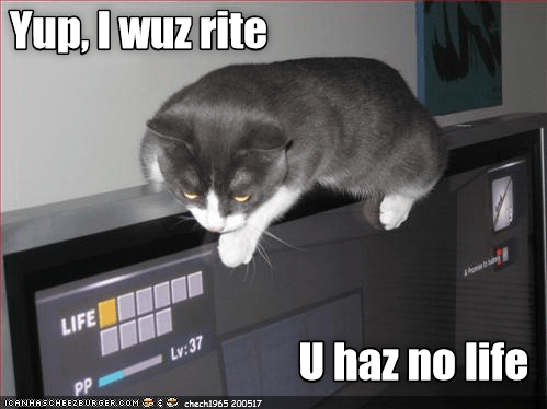 Cat meme of a cat looking at the video games status of having no Life left and making a bad pun about it.