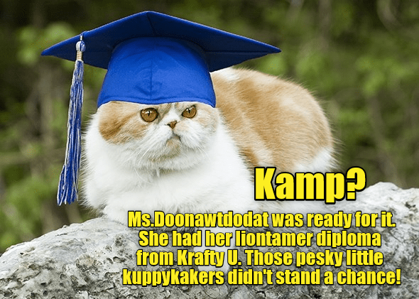 Krafty University meme over a picture of a cat wearing a graduation cap.