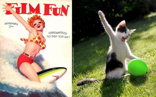 pin up cats - Cat - IMFUN SEDTEMBED 20 GUARANTEED TO DED YOU UD!