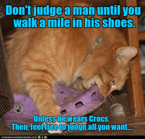 Funny cat meme that starts out all deeps and then goes silly about cats chewing your shoes