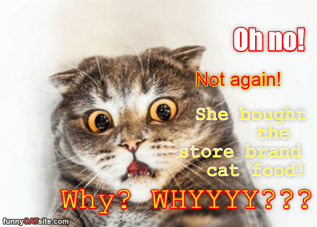Funny cat meme of kitty freaking out about getting store brand cat food.