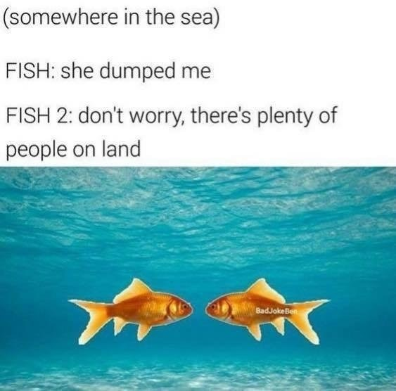 Meme about dating featuring the phrase plenty of fish in the sea, but reversed.