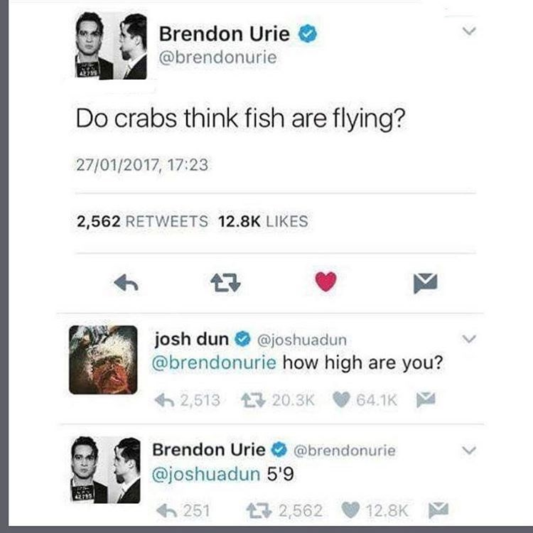 Funny meme where a stoned person sends a tweet wondering if crabs think fish are flying, someone asks how high he is and he responds with his height.